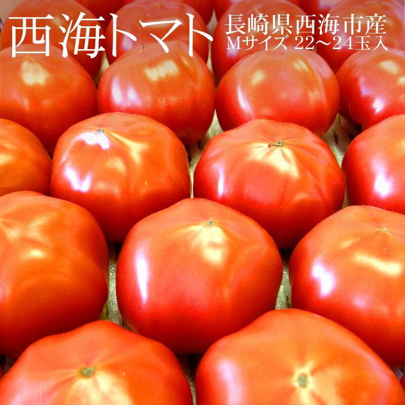 長崎県西海市産 西海トマト Mサイズ22-24玉(約3kg)[期間限定 濃縮・高糖度トマト 冷蔵便 送料無料]