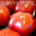 西海トマト Lサイズ18-20玉(約3kg) 長崎県西海市産 高糖度 桃太郎トマト 冷蔵便【送料無料】【代引き不可】