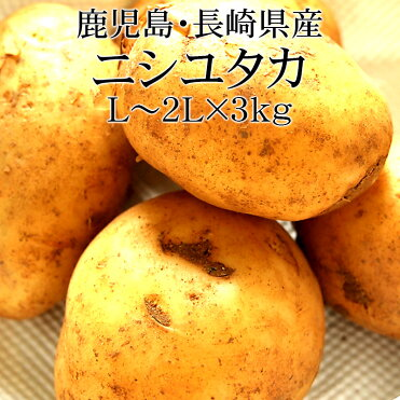 鹿児島県産ニシユタカ 2Lx3kg 新じゃが [送料無料 使いやすい量 野菜便 常温便 送料無料 給食・ホテル・飲食店・居酒屋]|ROOM - 欲しい! に出会える。