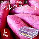 [2020年秋収穫・貯蔵もの] 茨城県産シルクスイート L×5kg A等級 [さつまいも ひね 高糖度 野菜便 常温便 送料無料]