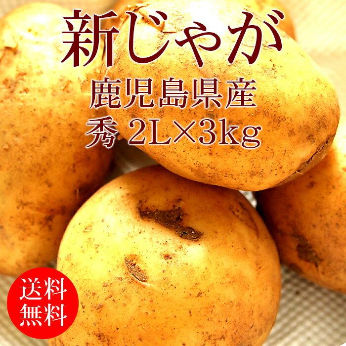 [新じゃが]鹿児島県産じゃがいも 2Lx3kg [使いやすい量]【野菜便】【常温便】【送料無料】【代引き不可】