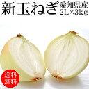 愛知県産新玉ねぎ 2Lx3kg [使いやすい量]【国産たまねぎ】【野菜便】【常温便】【送料無料】【代引き不可】