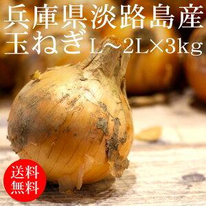 兵庫県淡路島産 玉ねぎ L〜2Lx3kg【送料無料 使いやすい量 やわらか 甘味 国産たまねぎ 野菜便 常温便】