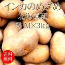 北海道産じゃがいも インカのめざめ Mx3kg [使いやすい量]【野菜便】【常温便】【送料無料】【代引き不可】