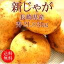 [新じゃが]長崎県産ニシユタカ 2Lx3kg [使いやすい量]【野菜便】【常温便】【送料無料】【代引き不可】