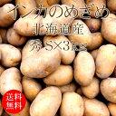 北海道産インカのめざめ Sx3kg [2019年産 じゃがいも 使いやすい量 野菜便 常温便 送料無料]