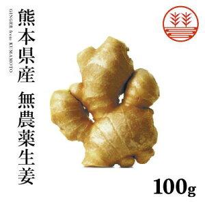 無農薬 生姜 100g 熊本県産 国産 生姜 しょうが ショウガ 根生姜 佃煮 薬味 きざみ 生姜 生姜焼き 唐揚げ