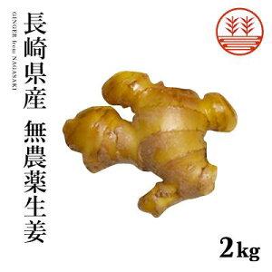 無農薬 生姜 2kg 長崎県産 国産 送料無料 生姜 しょうが ショウガ 根生姜 佃煮 薬味 きざみ 生姜 生姜焼き 唐揚げ