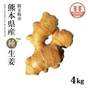 種生姜 熊本県産 無農薬生姜 4kg 送料無料 国産 生姜 しょうが ショウガ 生姜栽培 しょうが栽培 家庭菜園 種子 種用 たねしょうが 種しょうが 種生姜 たね生姜 生姜種 生姜の種 栽培 種芋 根