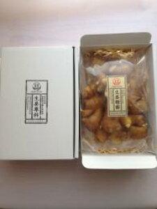 無農薬 生姜 500g 箱なし 熊本県産 国産 生姜 しょうが ショウガ 根生姜 佃煮 薬味 きざみ 生姜 生姜焼き 唐揚げ