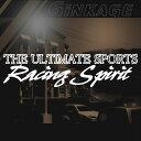 レーシング スピリッツ ステッカー 車 かっこいい サイズ:12cm×46cm カッティング アルティメット スポーツ カー バイク GT サーキッ…