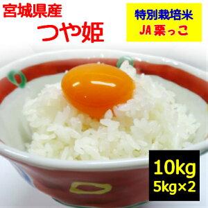 【送料無料】【特別栽培米】[白米]お取り寄せ 米 令和2年産!『宮城県産 つや姫 10kg』栗原市 JA栗っこ 指定!地域によっては追加送料がかかります