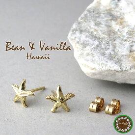 ハワイアンジュエリーBean Vanilla K14ゴールド スターフィッシュ ピアス14金 k14 YG イエロー ゴールド レディース 女性用 プレゼント ギフトBOX