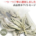 Whitesage i01