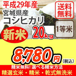 【食フェス開催!】【10%OFFクーポン配布中!】【H29年産新米】【玄米】【送料無料】平成29年産 宮城産 コシヒカリ 20kg 選べる精米方法