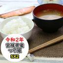 超特売価格にてご提供! 宮城産つや姫 10kg(5Kgx2) 令和2年産 乾式無洗米