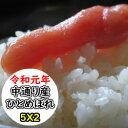 【特売価格にてご提供!】【送料無料】【新商品!】令和元年産 精米 乾式無洗米 選べる精米方法 福島中通り産ひと…