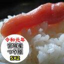 【超★特売価格にてご提供!!】【送料無料】令和元年産 乾式無洗米 宮城産つや姫 10kg (5Kgx2)