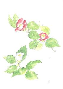 四季の庭・絵はがきNo.2