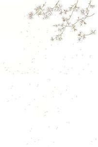 絵はがき 「桜」10枚入り