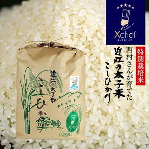 【Xシェフ】《特別栽培米》有機栽培白米5kgおいしい日本のお米西村さんが育てた『近江の太子米こしひかり』5kg送料無料|農水省認定滋賀県認証環境こだわり米コシヒカリお米5キロ国産生産者最高級美味しいお米