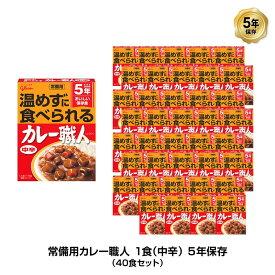 5年保存 非常食 江崎グリコ 常備用カレー職人 カレー 中辛 1袋/170g 40袋セット