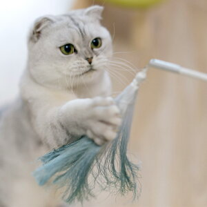 猫 おもちゃ pidan ピダン Cat Teaser Accessories / Tassel Refil つけかえ用おもちゃ 【ラッピング対応】 【メッセージカード対応】 猫じゃらし 猫 おもちゃ ねこじゃらし 猫用品 おしゃれ ネコ ねこ ペ