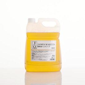 JAMES MARTIN ジェームズマーティン 薬用泡ハンドソープ 詰め替え用 5kg ハンドソープ 除菌 保湿 殺菌 ジェームスマーティン 無香料 風邪 インフルエンザ 肌荒れ 泡タイプ