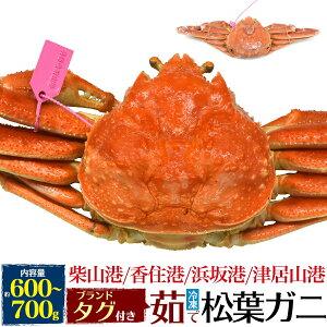 まつばがに 松葉かに 松葉蟹 かに 茹で冷凍松葉ガニ 約600〜700g カニ 蟹 ズワイガニ ずわいがに 松葉がに 但馬産 津居山カニ 松葉カニ