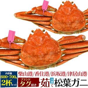 まつばがに 松葉かに 松葉蟹 かに 茹で冷凍松葉ガニ 約600〜700g 2杯セット カニ 蟹 ズワイガニ ずわいがに 津居山カニ 松葉がに 但馬産 松葉カニ