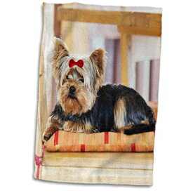 3D Rose Yorkie. Yorkshire Terrier. Cute Puppy with