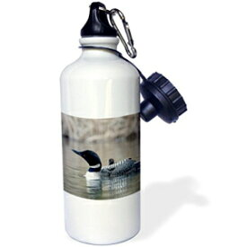 "3dRose wb_70368_1""British Columbia. Common Loon with chick-CN02 CSL0062 Charles Sleicher"" Sports Water Bottle, 21 oz, White"