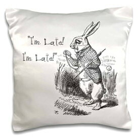 """3dRose Who are You-Smoking Caterpillar Quote from Alice in Wonderland-Pillow Case, 16 by 16"""" (pc_193796_1)"""
