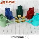 Haws66 shohin1