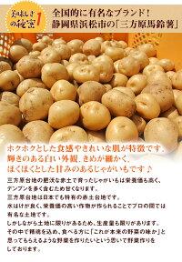 三方原馬鈴薯5kg【国産静岡じゃがいも馬鈴薯三方原男爵ジャガイモ】(沖縄・一部離島は別途料金がかかります)