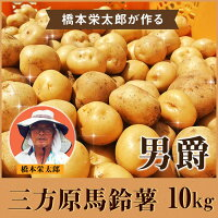 三方原馬鈴薯10kg【国産静岡じゃがいも馬鈴薯三方原男爵ジャガイモ】(沖縄・一部離島は別途料金がかかります)