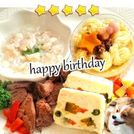 犬 手作り食 ドッグフード 手作りご飯 ☆愛犬用 誕生日や特別な日のお祝いやパーティに♪【アニバーサリーセット】手作り 手作り食 手作りご飯 手作りごはん 犬 犬用 誕生日ケーキ バースデーケーキ クリスマス