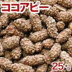 ココアピー(業務用)25kg豆菓子