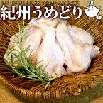 【冷凍】紀州うめどり手羽元2kg