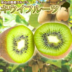 キウイフルーツ国産訳ありフルーツ・果物kiwiキウィキィウィキーウィ