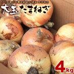 玉ねぎ4kg送料無料大玉大きい特別栽培和歌山県産玉ねぎ訳ありサイズ不揃い業務用野菜玉ネギタマネギ玉葱