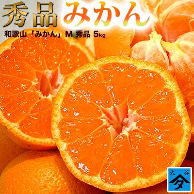 みかん和歌山県産【秀品】【送料無料】柑橘蜜柑ミカン産地直送