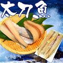 梅塩干物☆青空レストランで紹介!和歌山特産、太刀魚大漁10尾セット 【送料無料】 魚介 加工品 干物セット 太刀魚 タ…