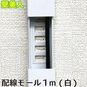 壁美人 配線モール 1m (白) CC1MW 若林製作所 ネコポス非対応 ホワイト 壁をキズつけない 配線カバー パソコン LANコード 配線コード …