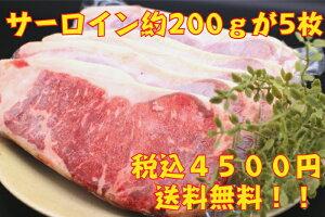 塊肉 送料無料 サーロインステーキ 訳あり おまけつき ステーキ バーベキュー BBQ