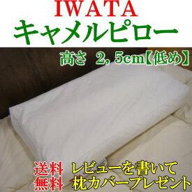IWATAキャメルピロー高さ2,5cm【低め】