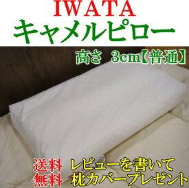 IWATAキャメルピロー高さ3cm【普通】