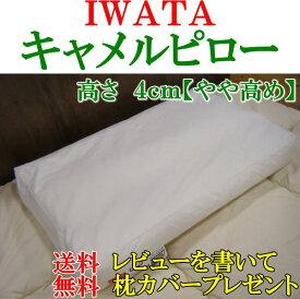 IWATAキャメルピロー高さ4cm【やや高め】