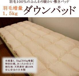 羽毛100%のふんわり暖かい敷きパッドダウンパッド シングルサイズ 送料無料関連ワード 羽毛敷きパッド あったかパッド シングル あたたか 敷き毛布・マイクロファイバー・イワタ・iwataダウンパッド・ムートンシーツではありません。