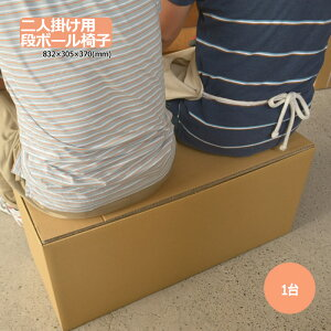 ダンボール 段ボール「2人掛用ダンボール椅子・ディスプレイ台 832×305×370mm 1台  【大型】 ※個人様宛て配送不可」 茶色 クラフト ダンボール箱 段ボール箱 椅子 イス 使い捨て アウトドア